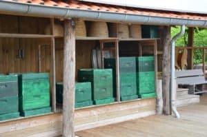 Bijenkasten in bijenstal van Hammerhof