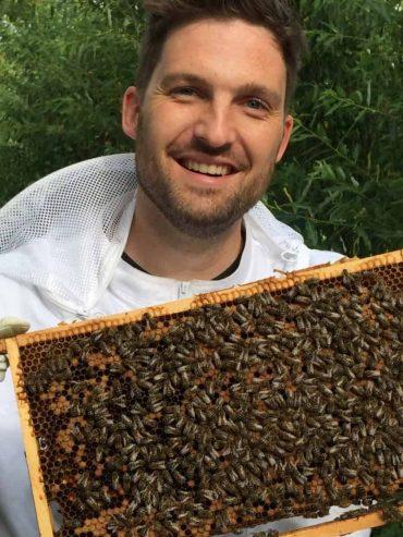 Sil laat een raampje bijen zien zonder kap op