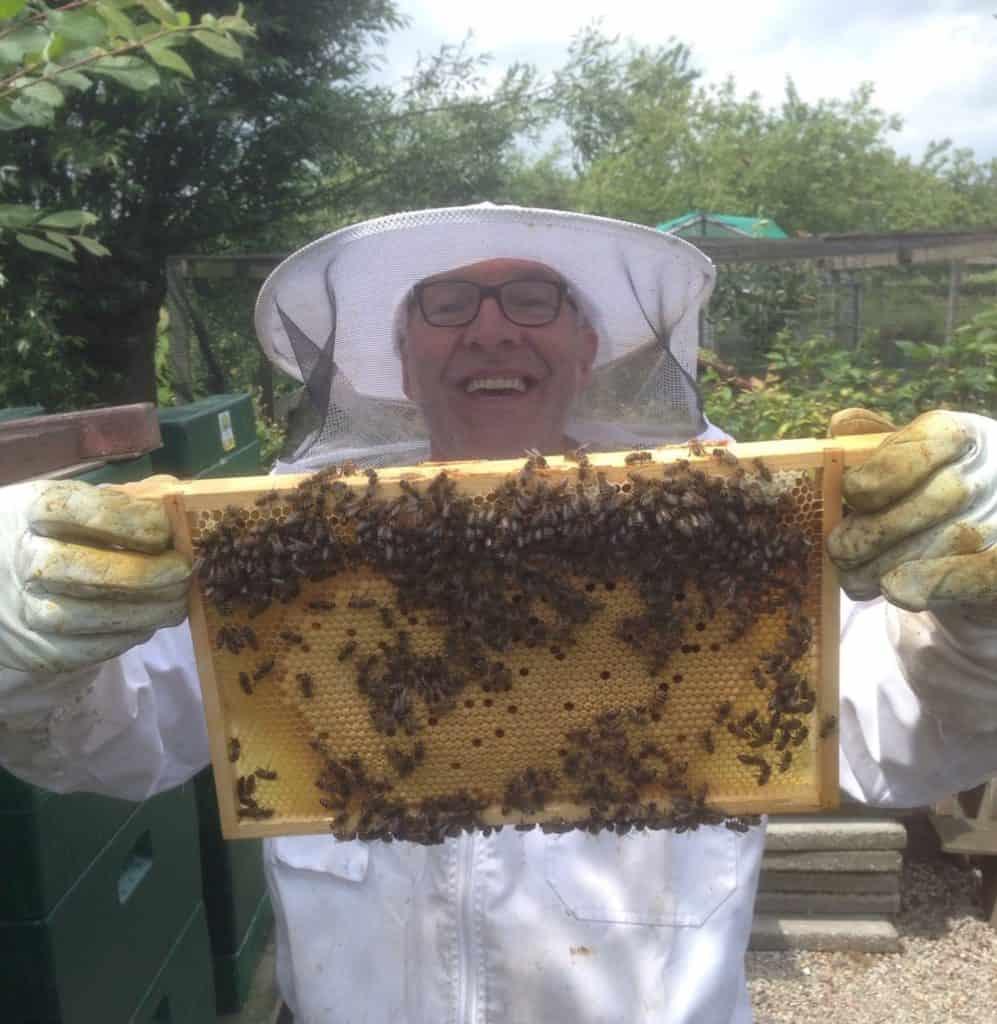 Imker Ben laat een raampje bijen zien