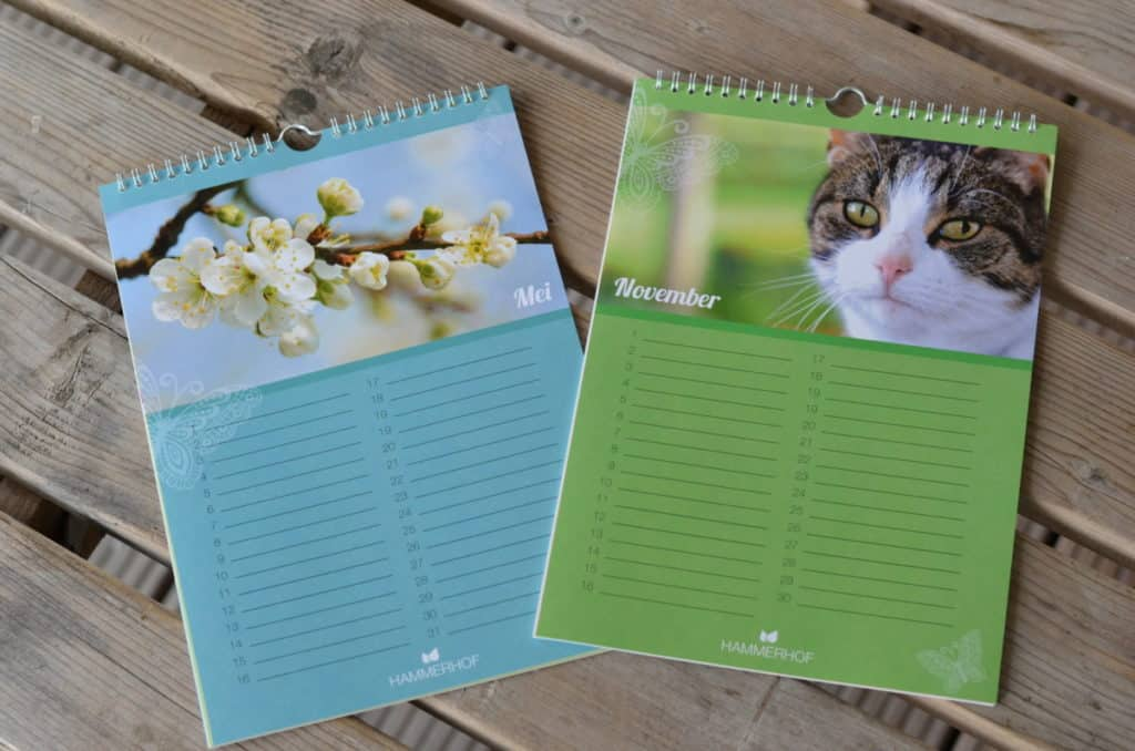 verjaardagskalender voorbeeld maanden mei en november
